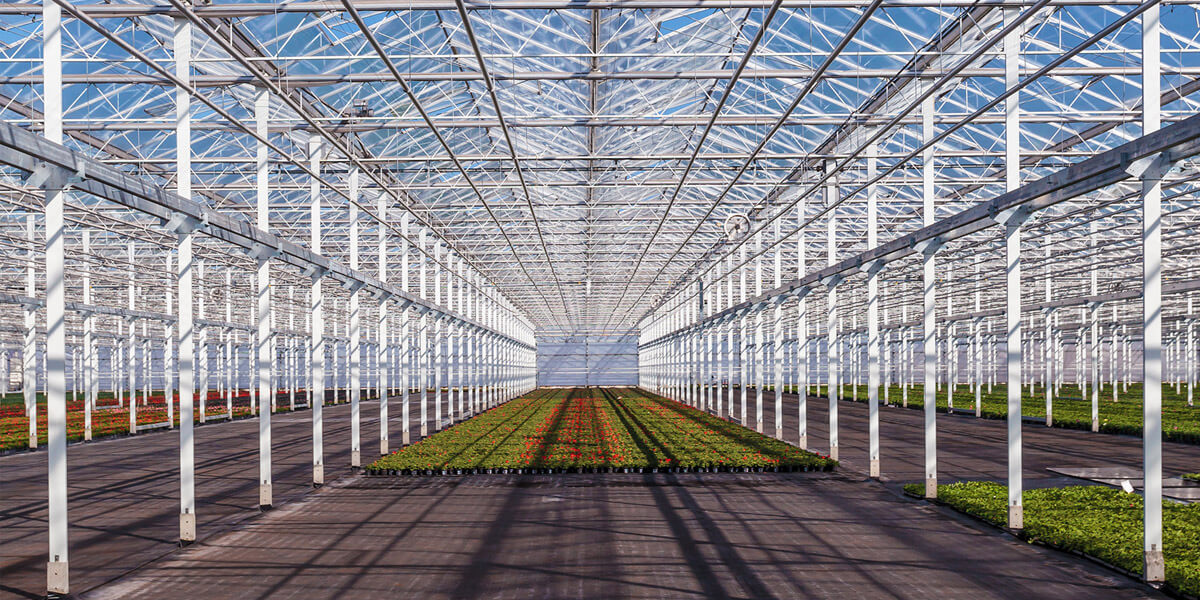greenhouse irrigation