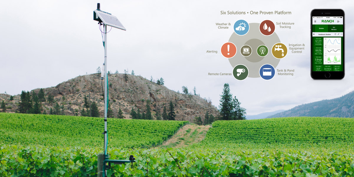 ranch digital farming control system in vineyard