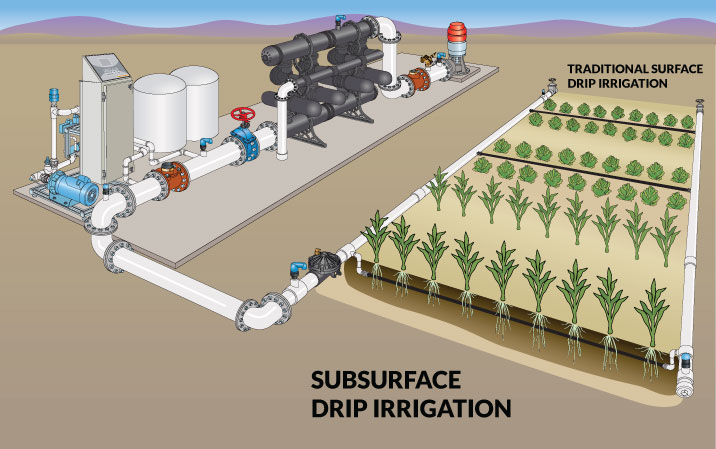 subsurface drip irrigation diagram